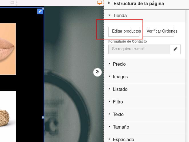 editar producto desde el Constructor de Sitios Plus