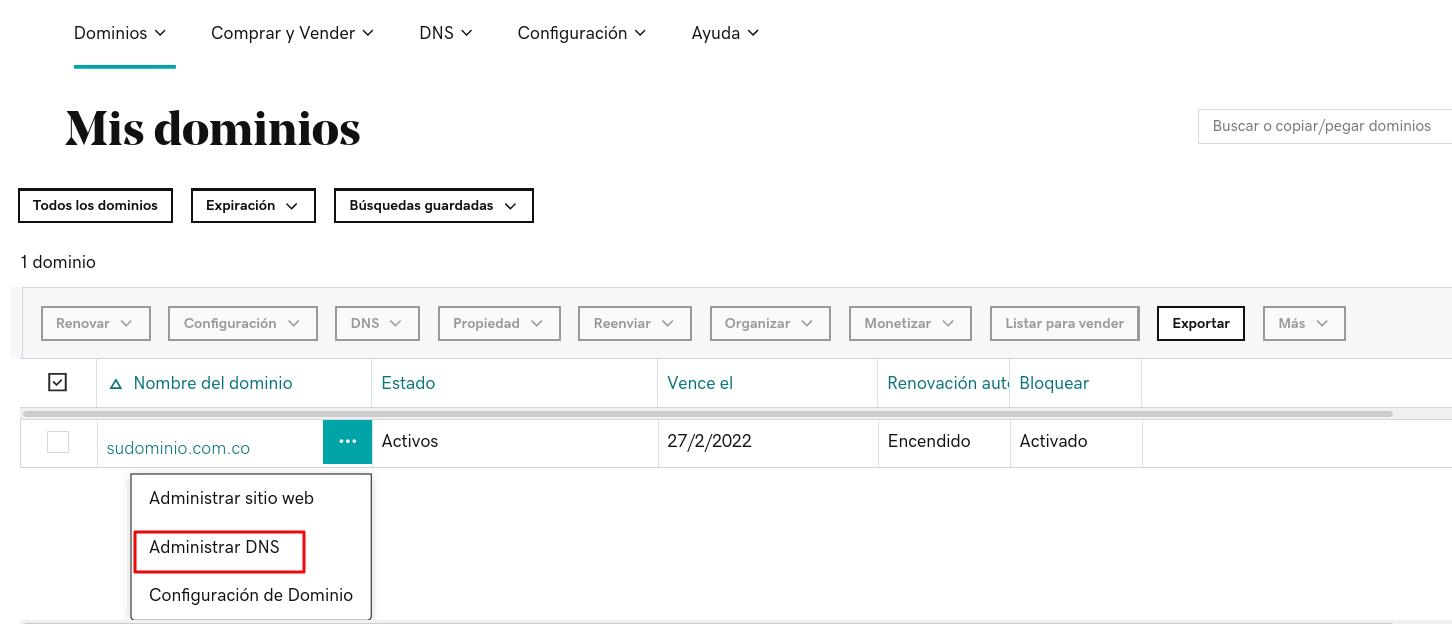 Opción seleccionar DNS